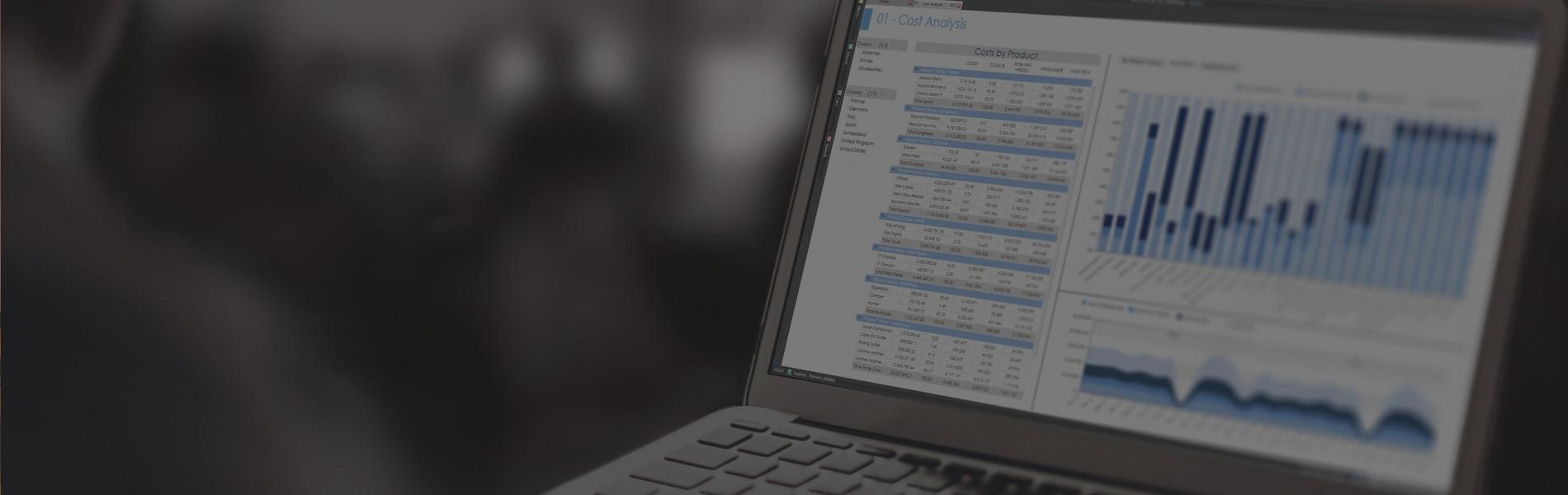 BOARD MIT Software Consultancy
